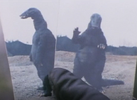 Nipponosaurus Front &Back