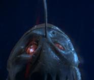It's like a latmern fish