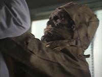 Cyber-Mummy-Gridman-April-2020-05