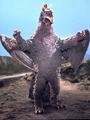 Hydra 1966