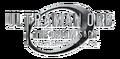 Ultraman Orb the Origin Saga Logo