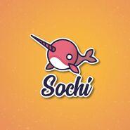 Sochi sponsor