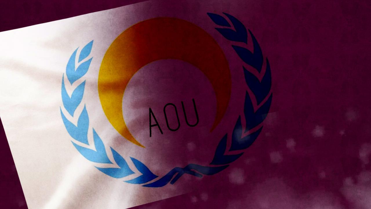 Arctic Ocean Union