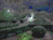 Umiog garden 1cr