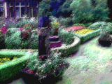 Rose Garden/Backgrounds