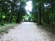 Rgd garden 3