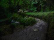 Umiog forest p1br