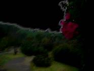 Umiog rose 2bn