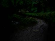 Umiog forest p1bn