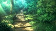 Forest p1af