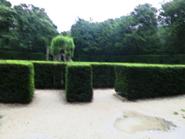 Rgd garden 5