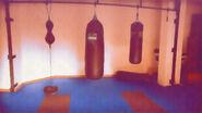 Cico gym03