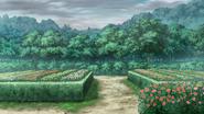 Garden 1cc