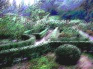 Umiog garden 1c