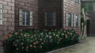Rose g1c