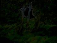 Umiog forest p2bn