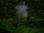 Umiog forest p2br