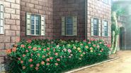 Rose g1cf