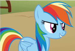 250px-Rainbow dash S01E13.png