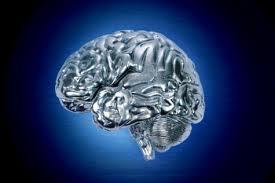 T-5001's Brain