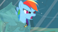 201px-Rainbow Dash Earth ponies are numbskulls! S2E11 .png