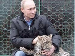 Vladimir Putin Unanything Wiki Fandom