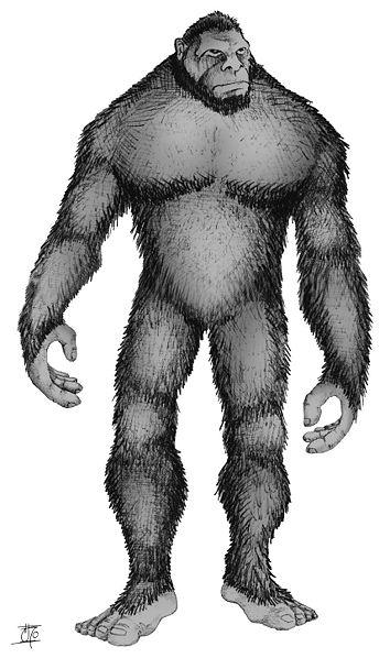 Monkey Creatures