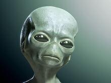 The green aliens.jpg