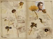 Nathan Drake's journal 2