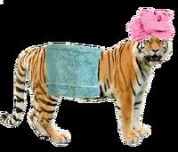 Grft in a bath towel.png