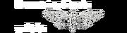 Wikia Cicada 3301 Logo.png