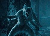 Underworld - Evolution (2006).mp4 snapshot 00.06.51 -2017.05.08 15.37.13-