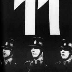 Soldados & Oficiales de la Waffen-SS