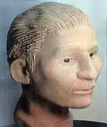 Shelby County John Doe (2002)