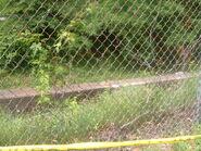 Fulton County John Doe (May 13, 2004)