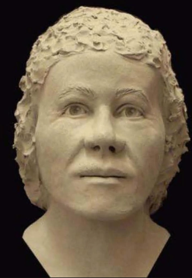 Pierce County Jane Doe (2010)