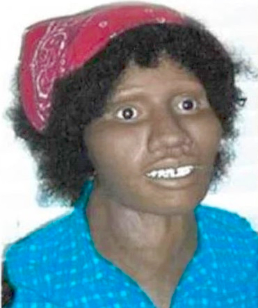 Goldsboro Jane Doe