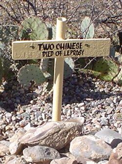 Cochise County Does (1878-1884)
