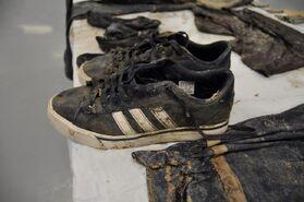 Gonzalez shoes