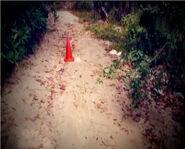 Valentine Doe crime scene2