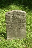Addison County John Doe (1881)