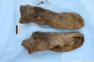 UP62272 Socks
