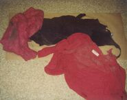 Andrea clothing