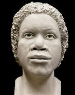 Pittsylvania County Jane Doe