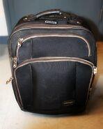 Madison County Jane Doe suitcase