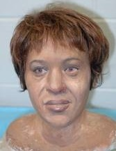 Fulton County Jane Doe (2003)