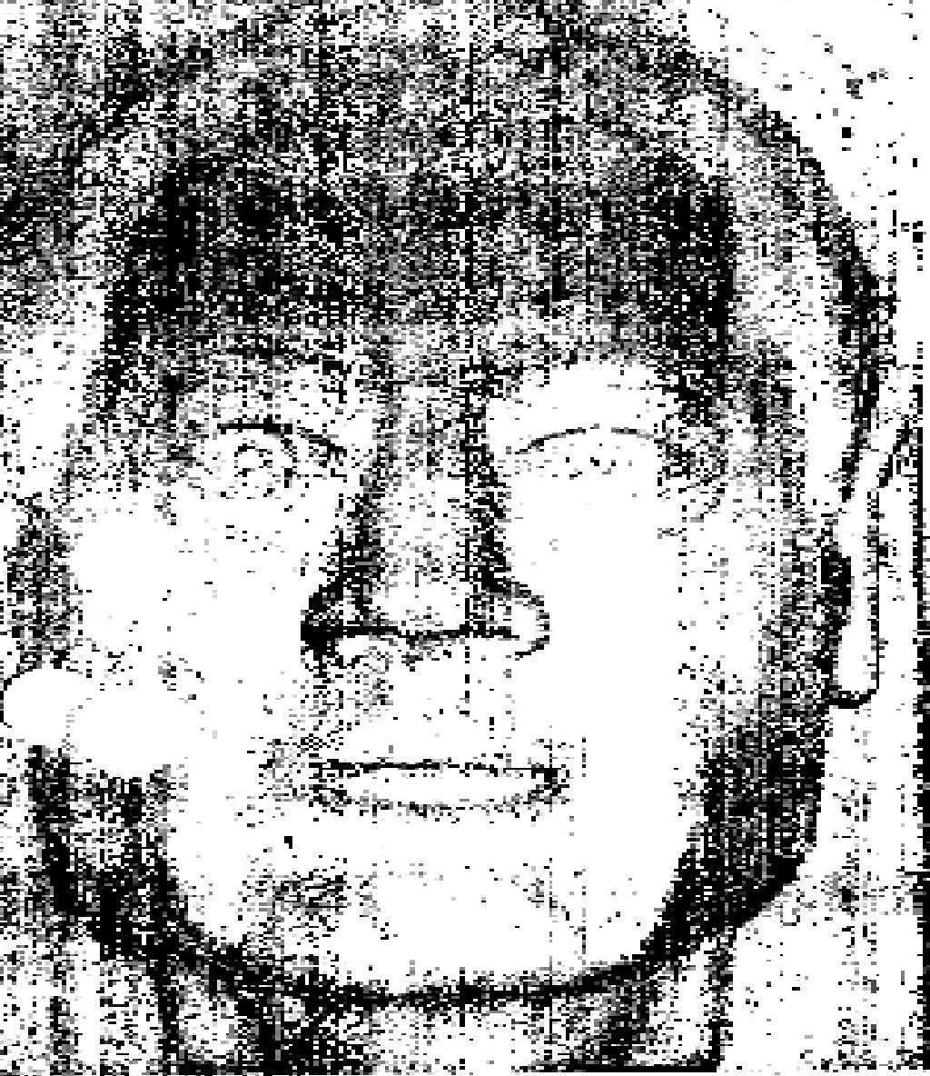 Solano County John Doe (1979)