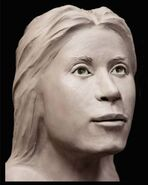 Cook County Jane Doe 3D