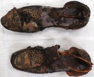 DelafieldShoes