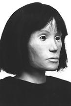 Honolulu County Jane Doe (1993)